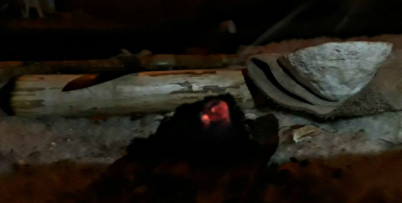 coal pic
